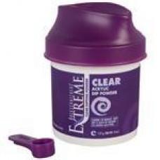 Extreme Powder Glaze Clear 4oz.